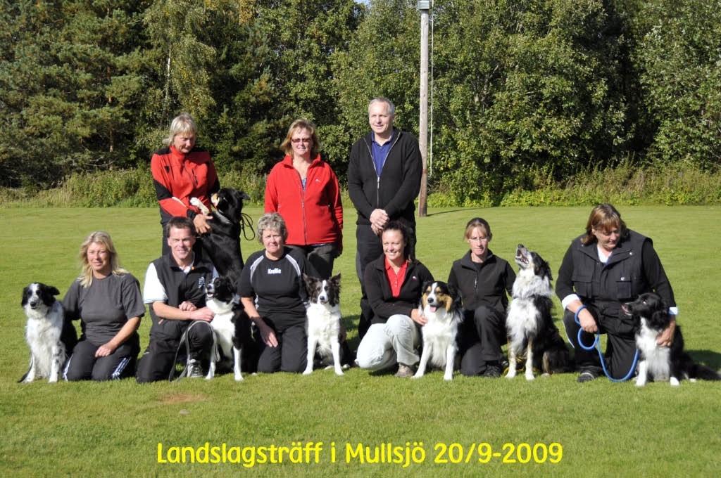 Laget_2009