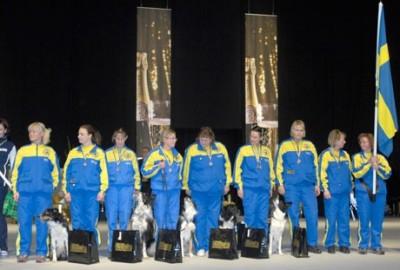 Nordiska Mästerskapen i lydnad 2010